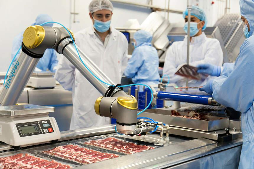 Cobots en la industria alimentaria: mayor productividad e higiene en los  procesos
