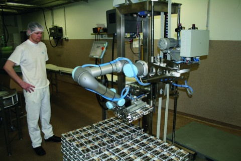 two UR5 robots in a packaging and palletizing application.jpg