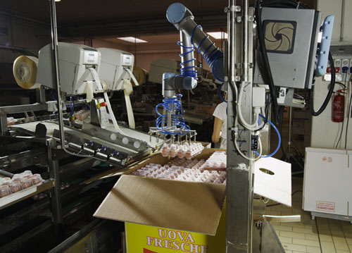 Collaborative Robots Are Ideal For Hygienic Food Processing Environments