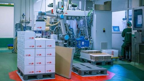 ur10_palletizing_food-industry_collaborative_robots_nortura_norway